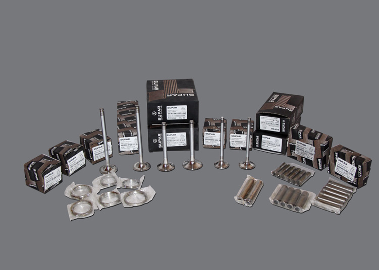 Swam Power, Energy Behind Your Business, Gas Generators Spare Parts